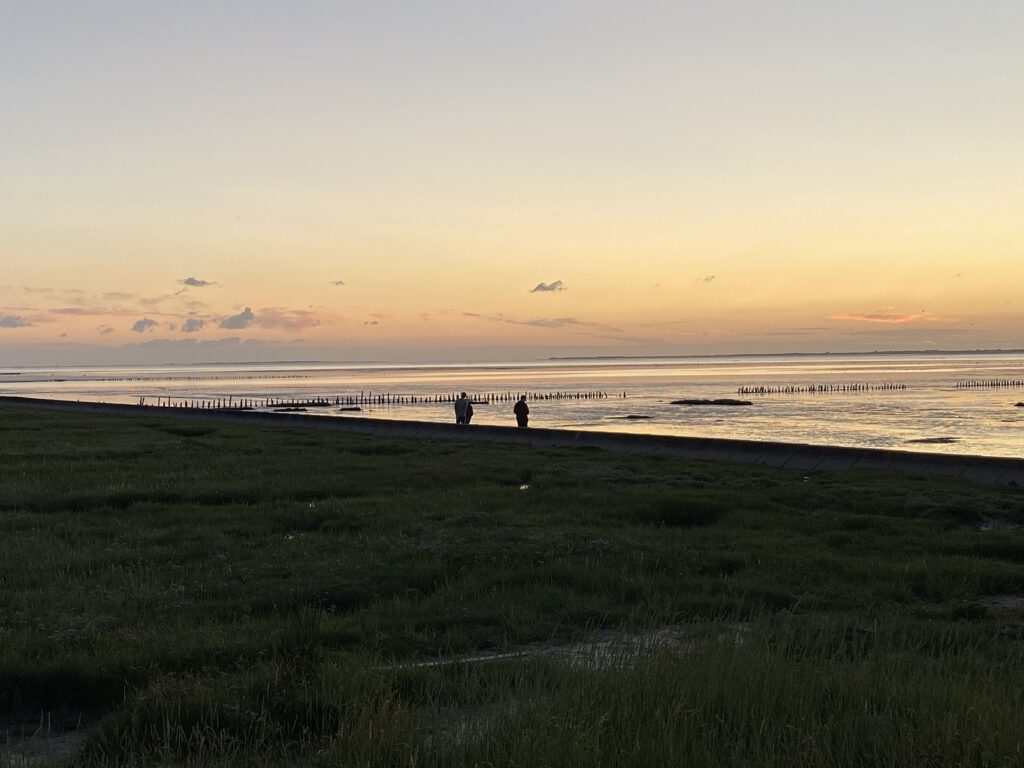 Magisch: Die Atmosphäre zum Sonnenuntergang mit Blick auf das Wattenmeer. CA-Foto