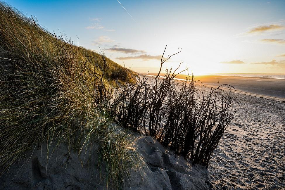 Diesmal Schauplatz von Morden: Die Insel Langeoog. Adobe-Stock-Foto